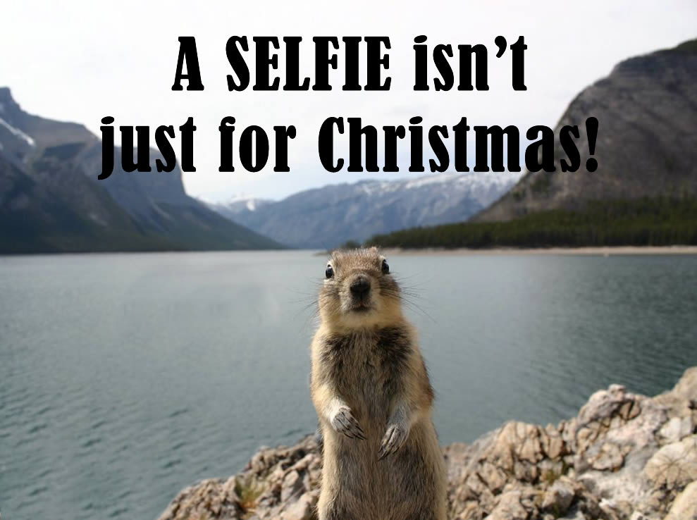 selfie-squirrel